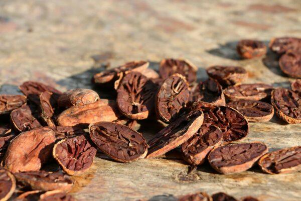 To'ak premium drinking cacao powder 100%